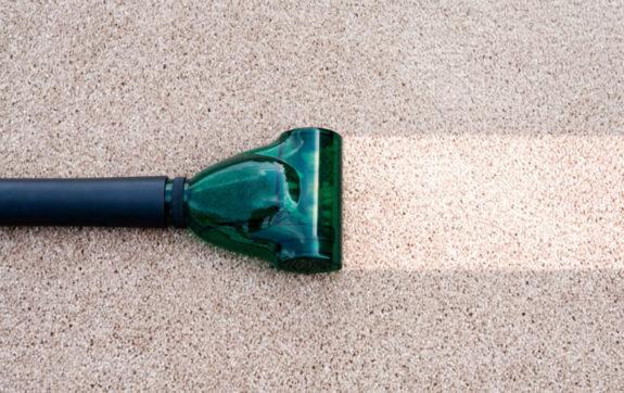 Best Carpet Cleaner For Pets 2019